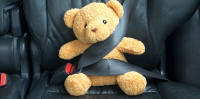 teddy bear seat belt